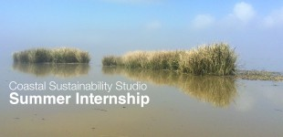 2015 CSS Summer Internship Program